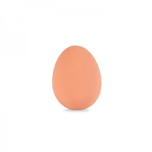 Huevo saltarin