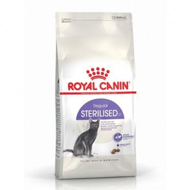 Adult sterilised feline