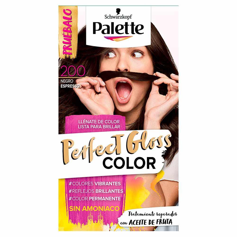 Tinte Palette perfect gloss color tinte 200