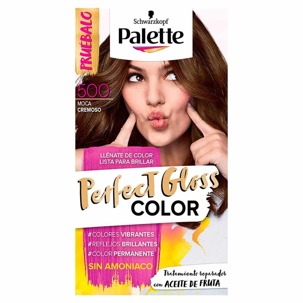 Tinte Palette perfect gloss color tinte 500
