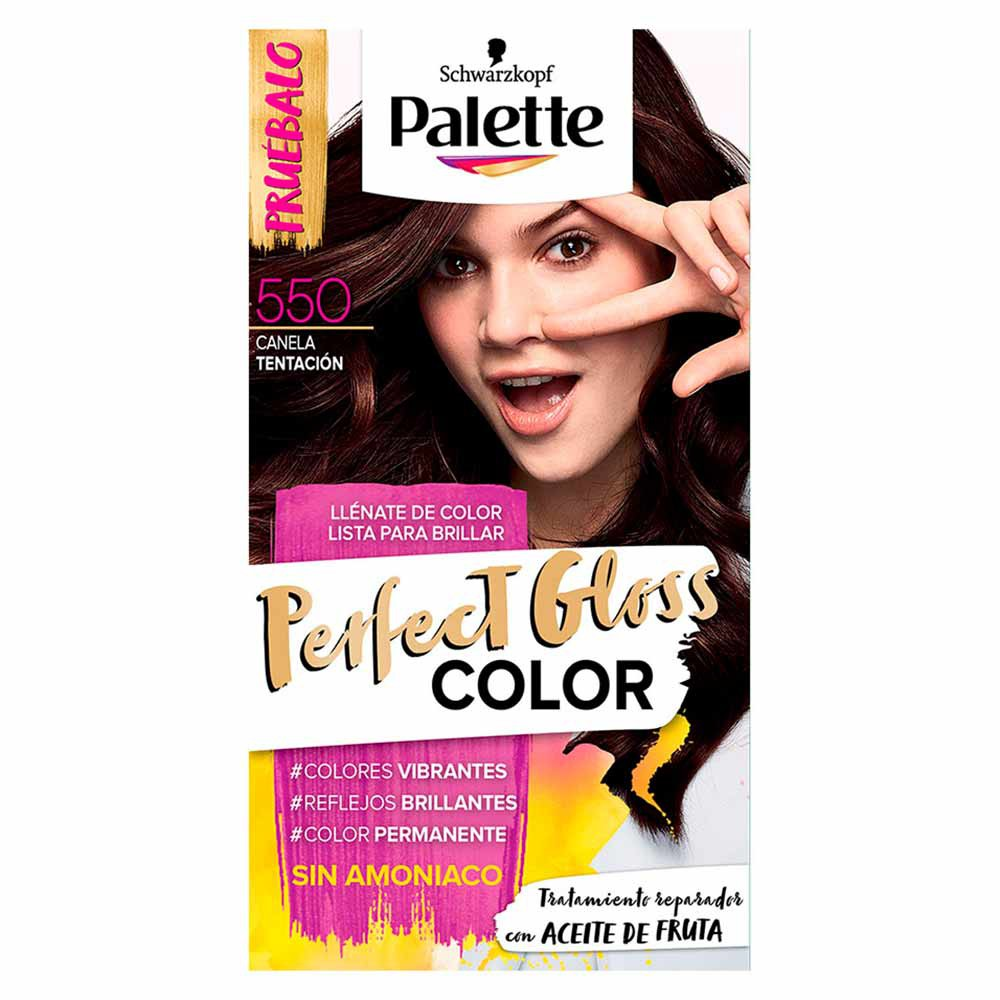 Tinte Palette perfect gloss color tinte 550