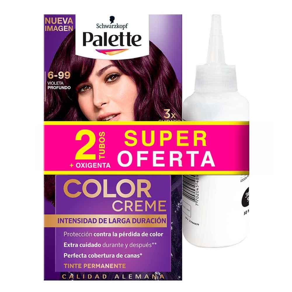 Tinte Palette color creme tinte 6-99