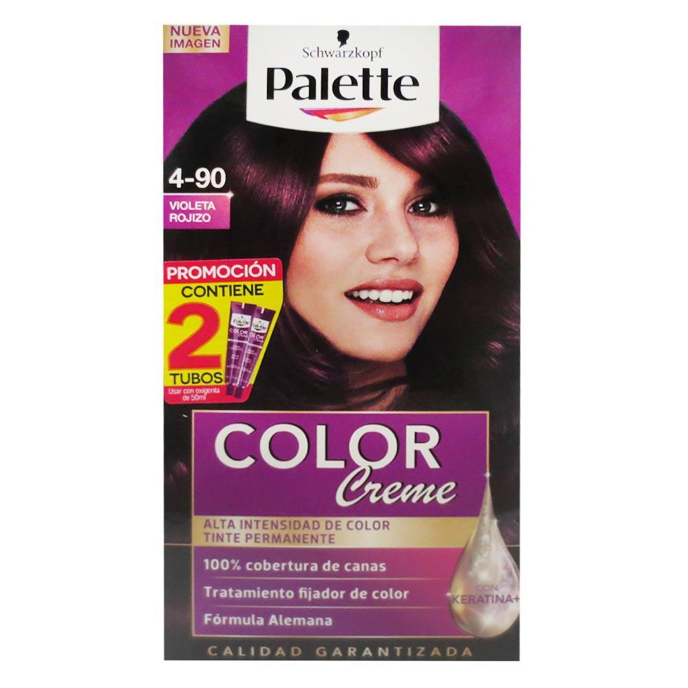 Tinte Palette Cc 4-90 Doble Tubo