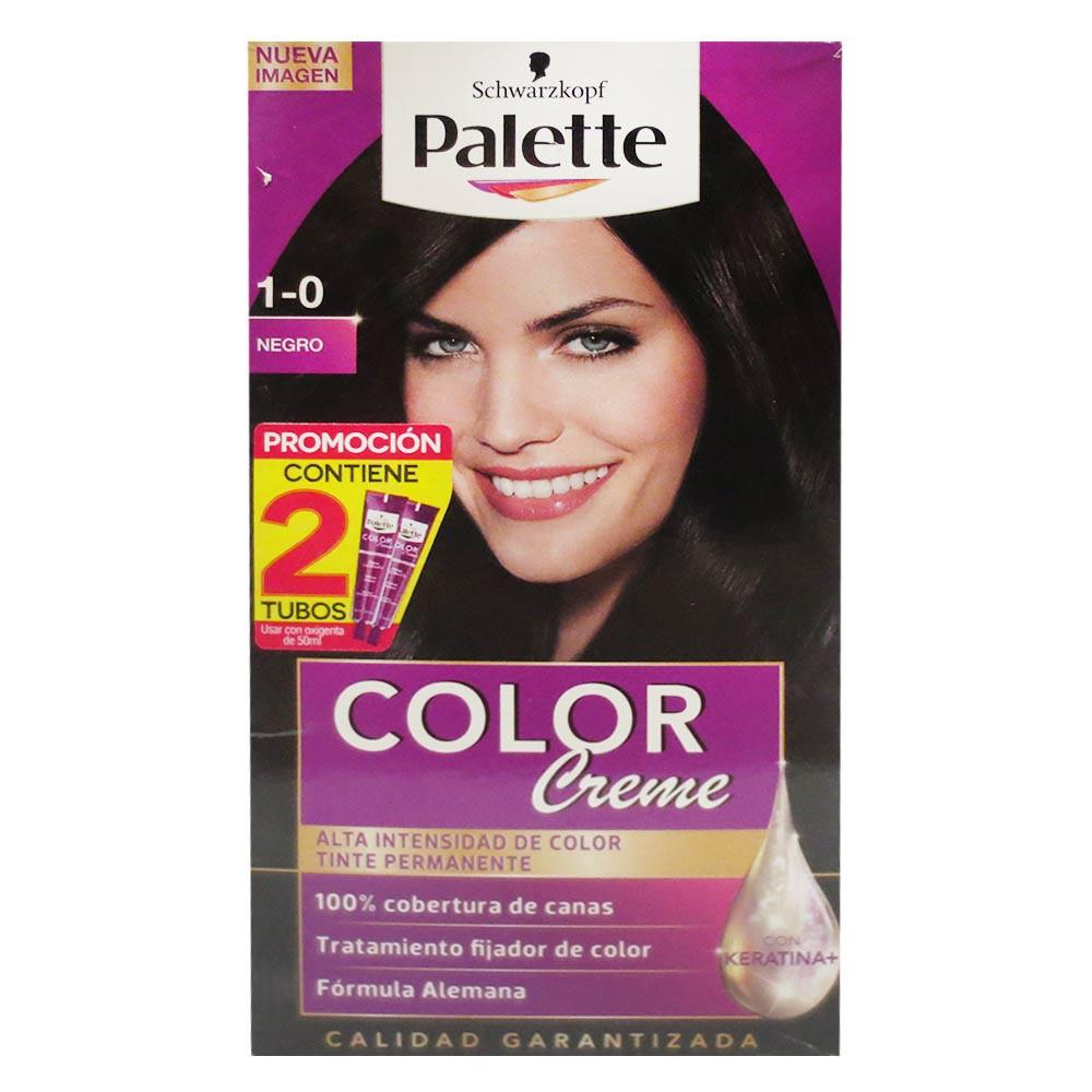 Tinte Palette Cc 1-0 Doble Tubo