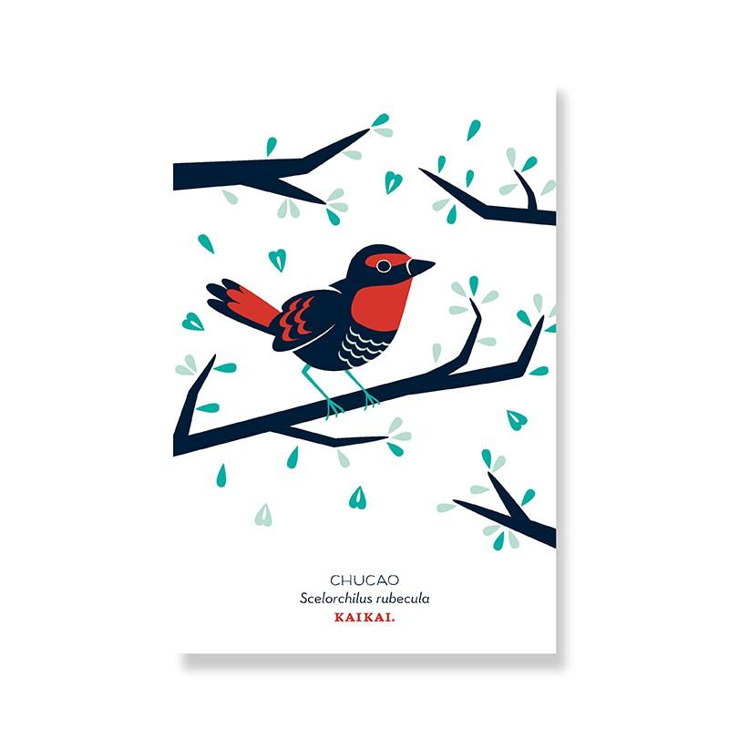 Postal Aves chilenas Chucao Postal 10x15 cm.