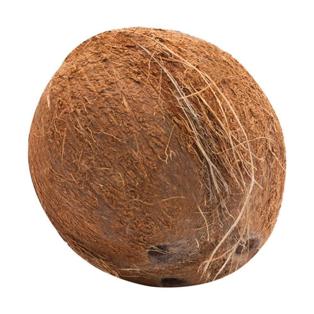 Coco institucional