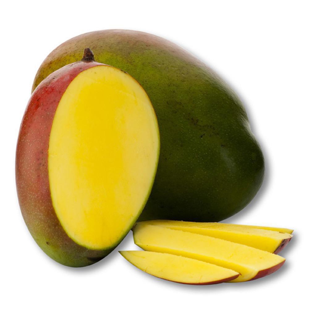 Mango Tommy E.C.