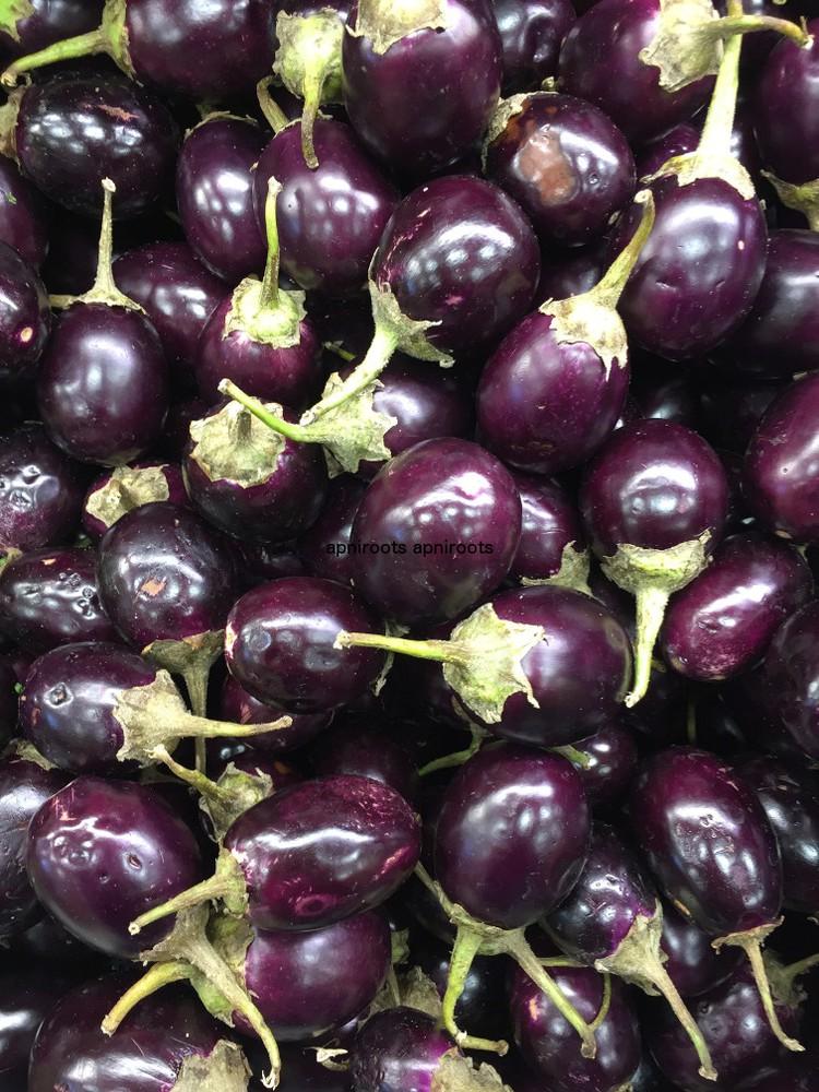 Eggplant small