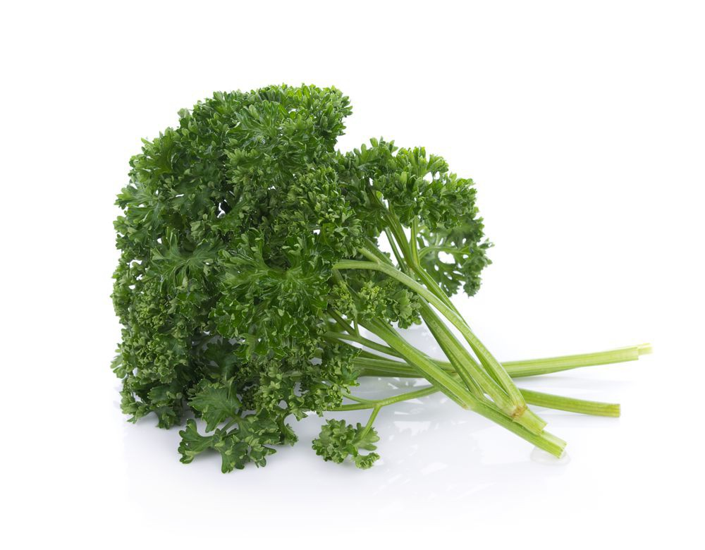 Parsley Curly Organic