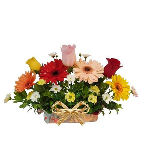 Arcoiris - arreglo de rosas y gerberas  ( Flores Naturales ) Diseño simple en forma curva con 3 rosas, 4 gerberas, pompones y follajes, montado en base humectada con papel decorativo  ( Flores Naturales )
