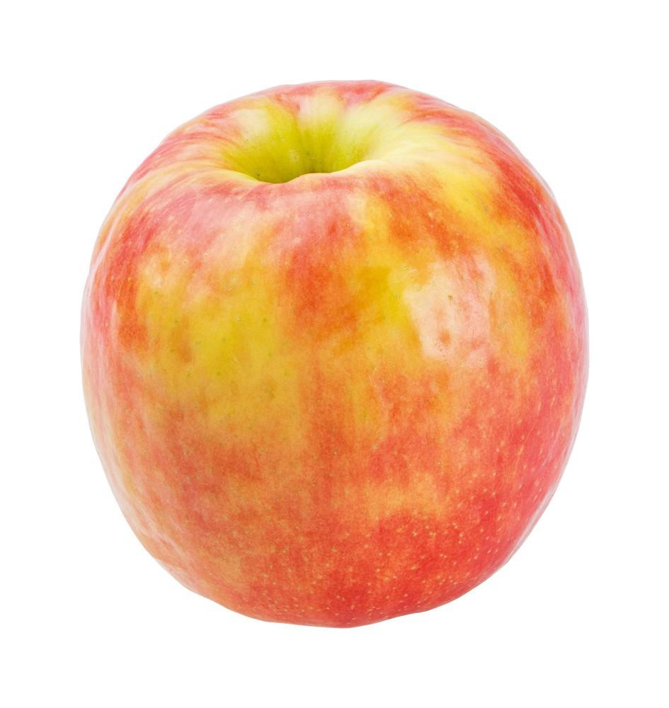 Apples- Pink Lady