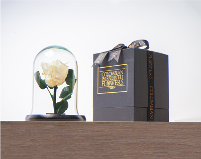 Domo mini rosa blanca Medidas 16x11