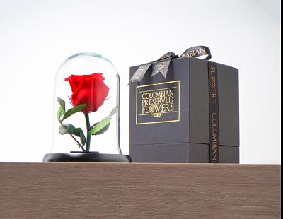 Domo mini rosa roja Medidas 16x11