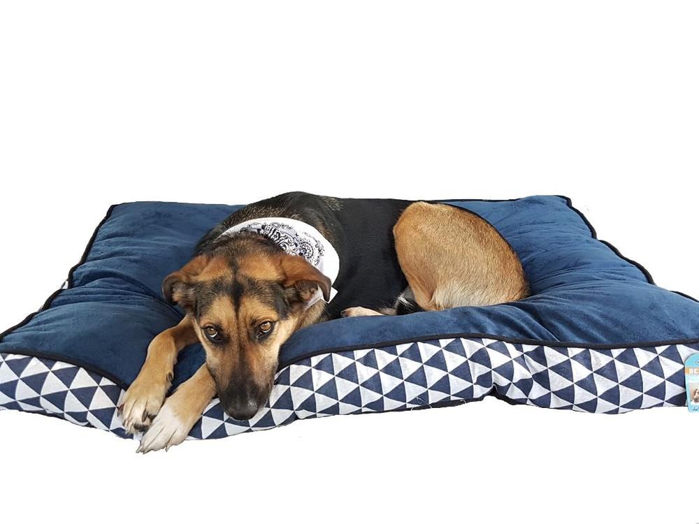 Colchón azul perro xl