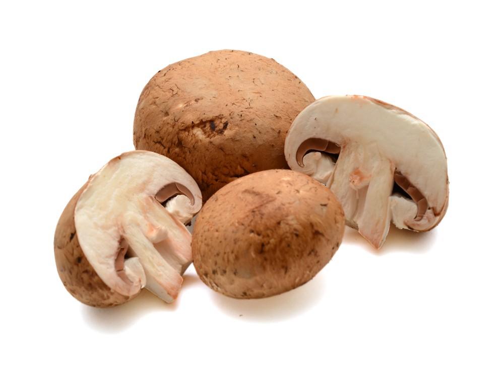 Loose brown mushrooms organic