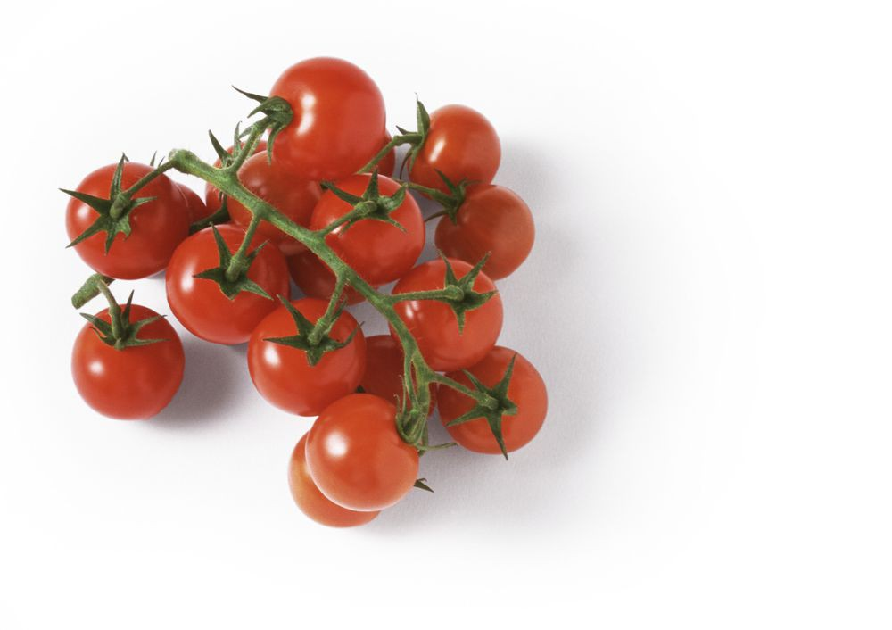 Tomatoes Cluster Red Organic