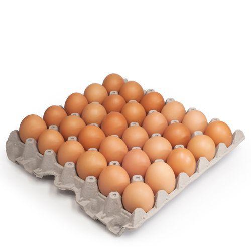 Bandeja de huevo libre pastoreo 30 unidades