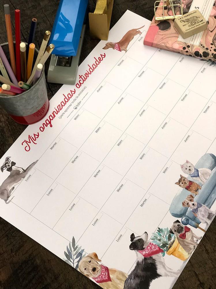 Organizador escritorio XL · Perros Taco de 13 Hojas