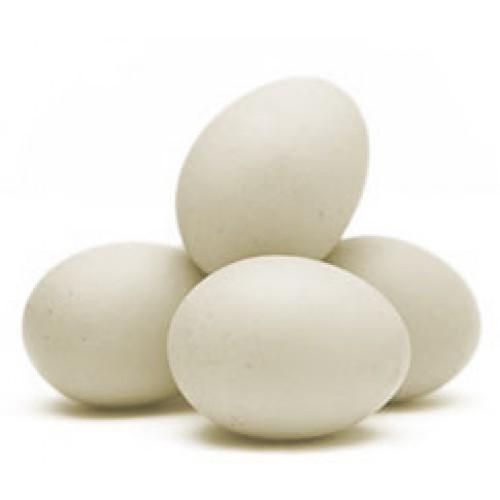 Ovo branco grande