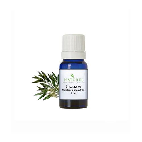 Aceite esencial arbol del té 5 ML.