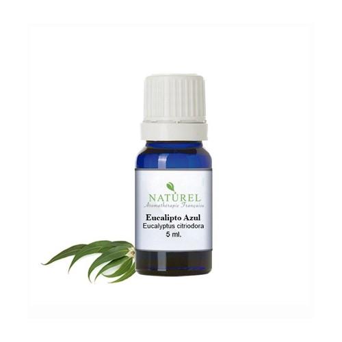 Aceite esencial eucalipto azul 5 ML.