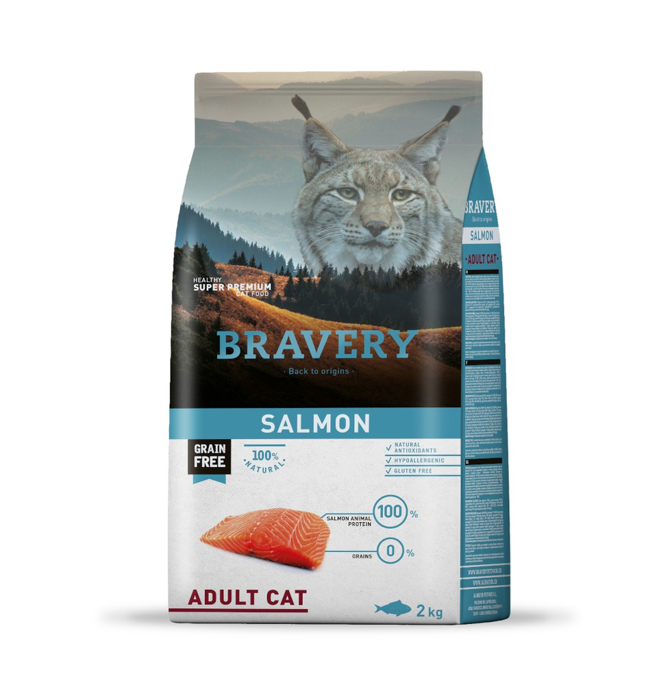 Salmon adult cat
