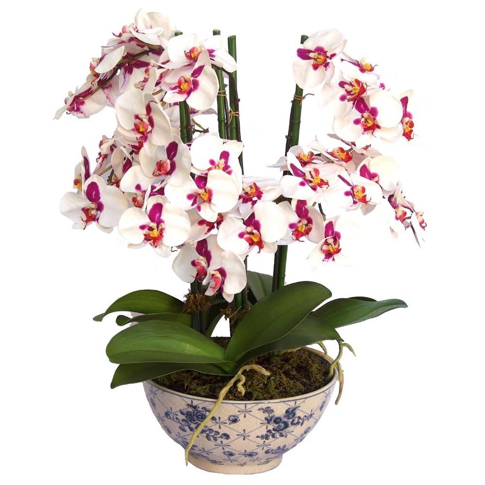 Orquidea de seda 3 En caja