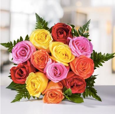 Rosas de colores 12 und