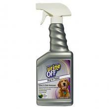 Urine off perro