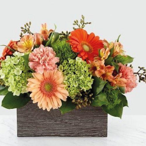 Cesta silveste y florida con gerberas 30 cms x 25 cms