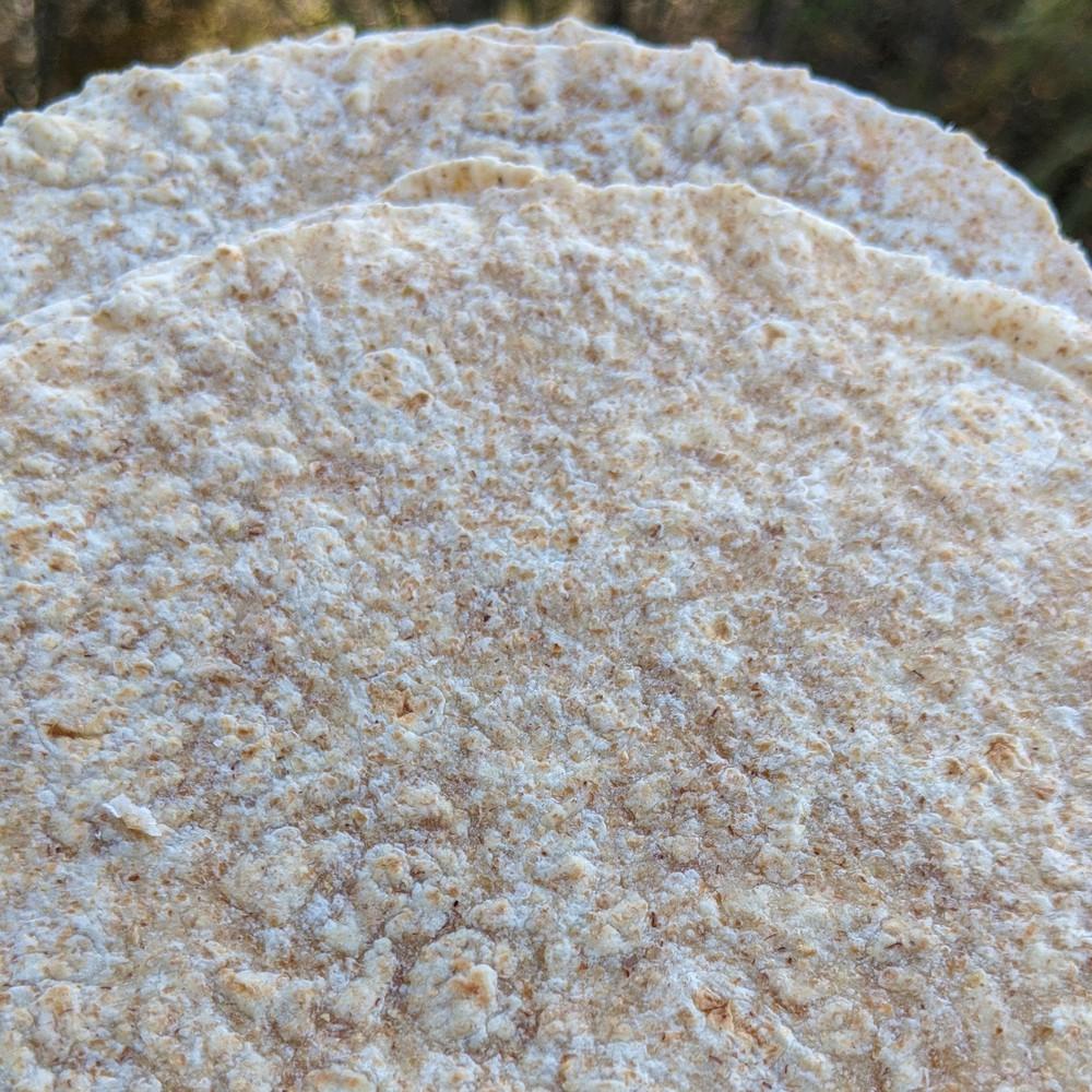 """Tortillas de trigo integral - 7"""" (17.5cm.) 12 Unidades por bolsa"""