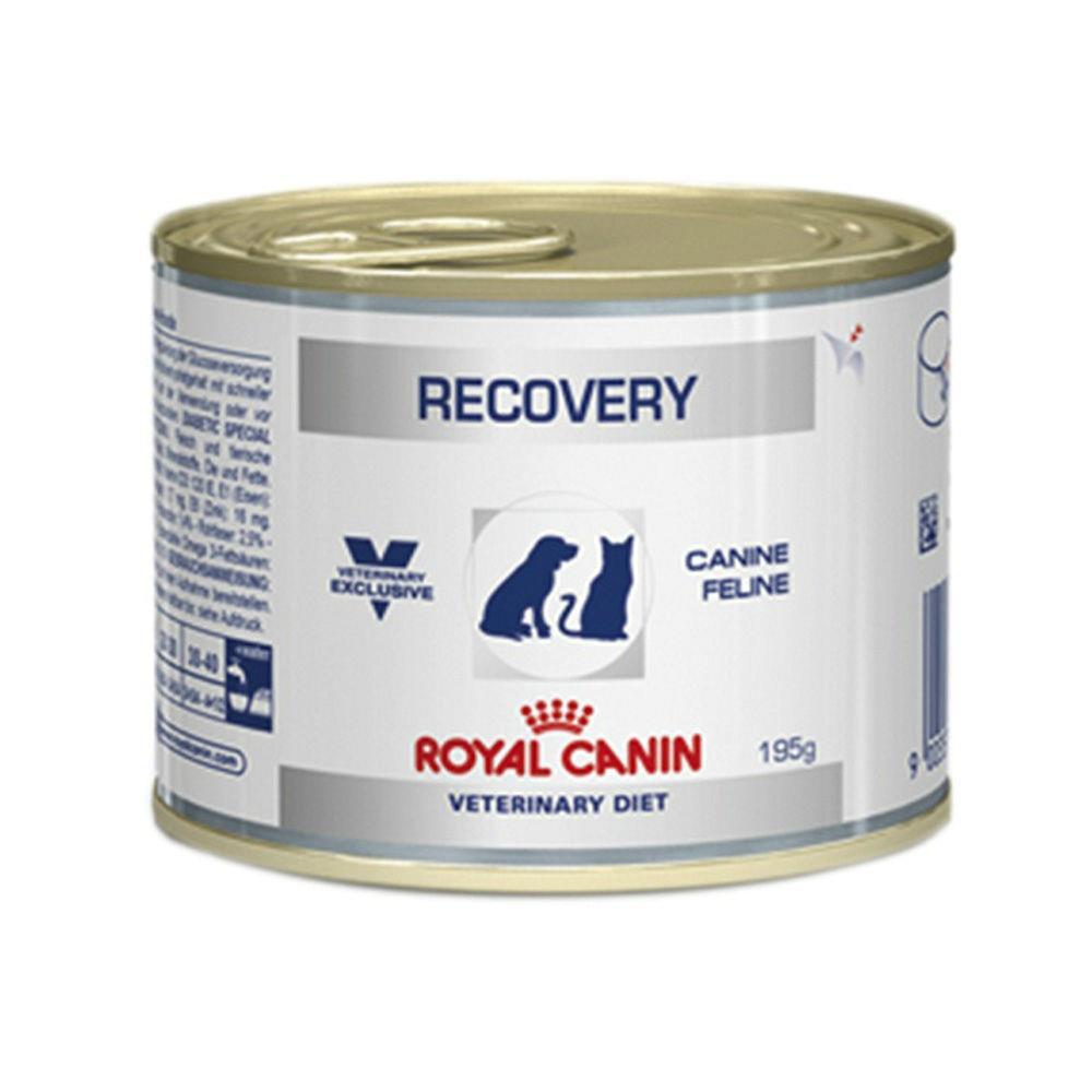 Ração recovery veterinary cães e gatos 195g
