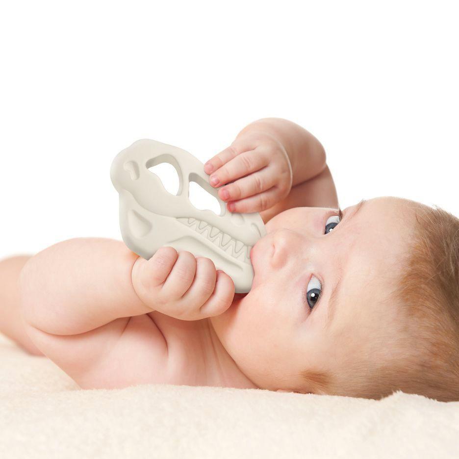 "Mordedor para bebé ""teether rex"" 20.32 x 10 cm"