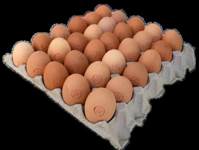 Bandeja huevos segunda Bandeja de 30 unidades