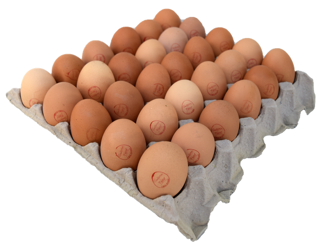 Bandeja huevos Super Bandeja de 30 unidades
