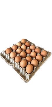Bandeja huevos Gigantes Bandeja de 20 unidades