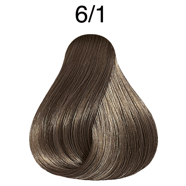 Color perfect rich naturals 6/1 rubio oscuro ceniza