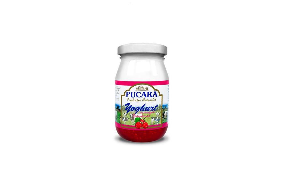 Yogurt sabor frambuesa Frasco 230 g