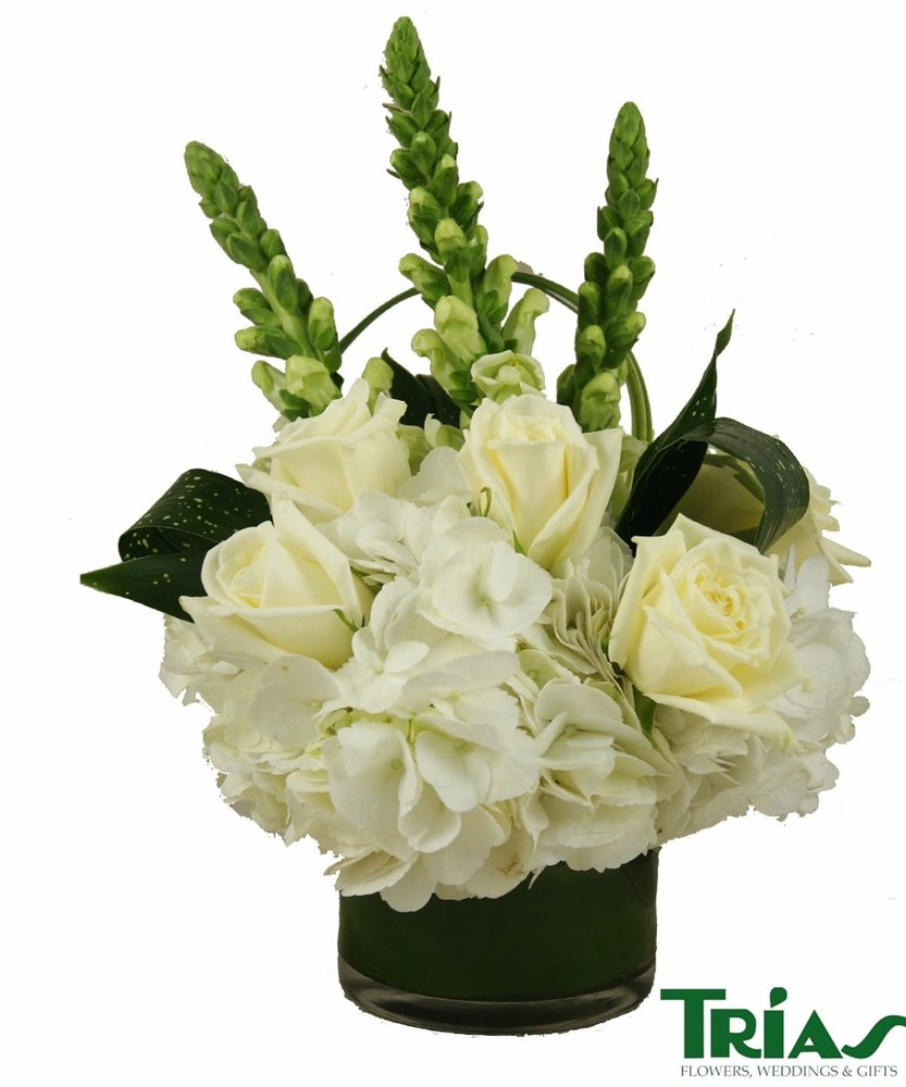 Pearly white Arrangement