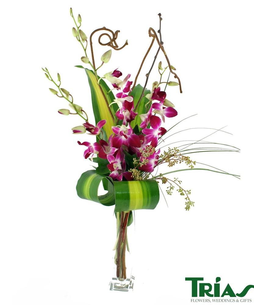 Orchid budvase Arrangement