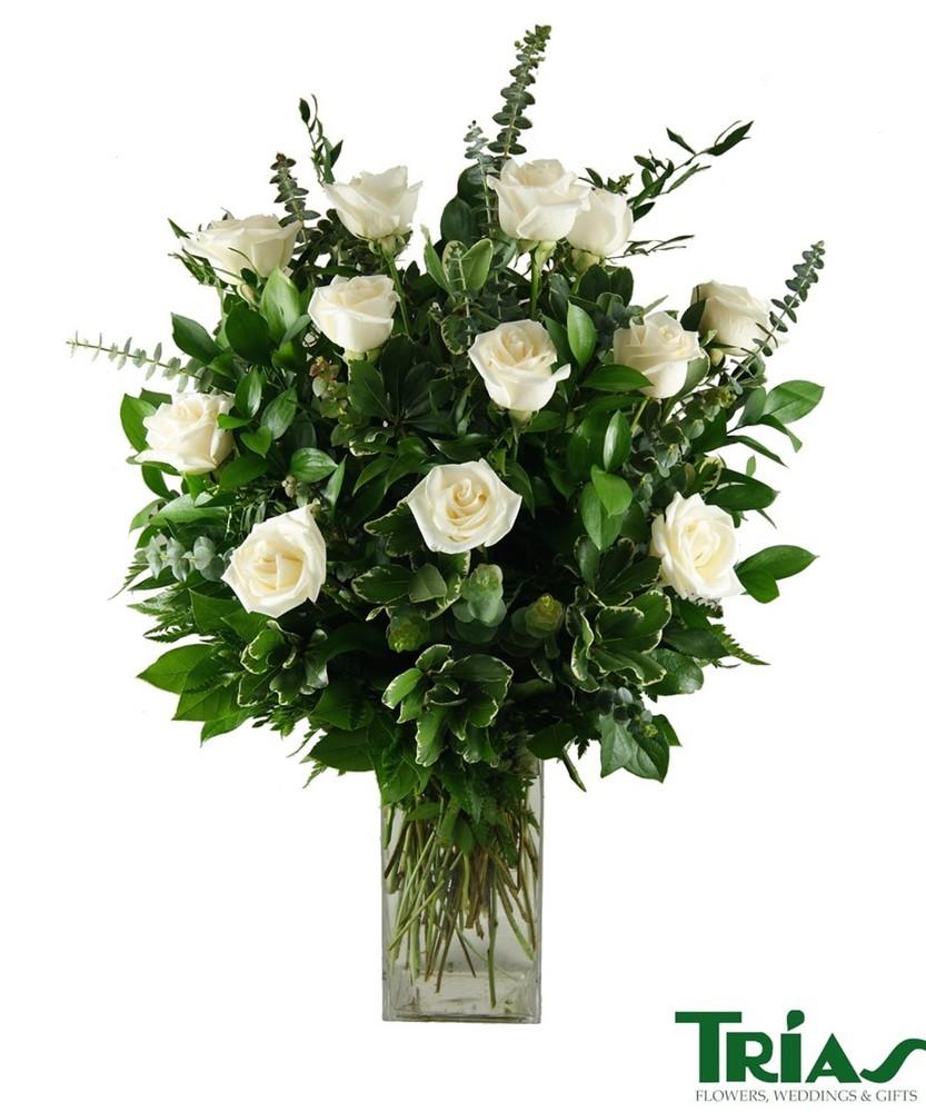 1 dozen white roses Arrangement