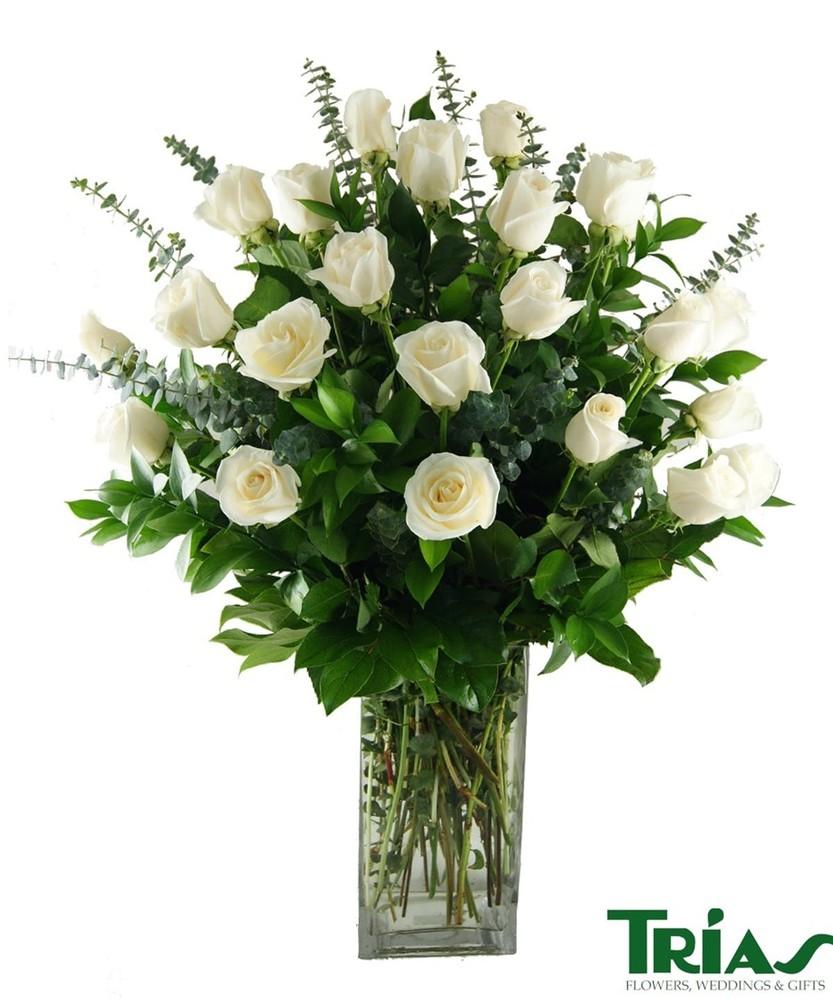 2 dozen white roses Arrangement
