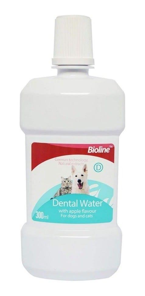 Dental water