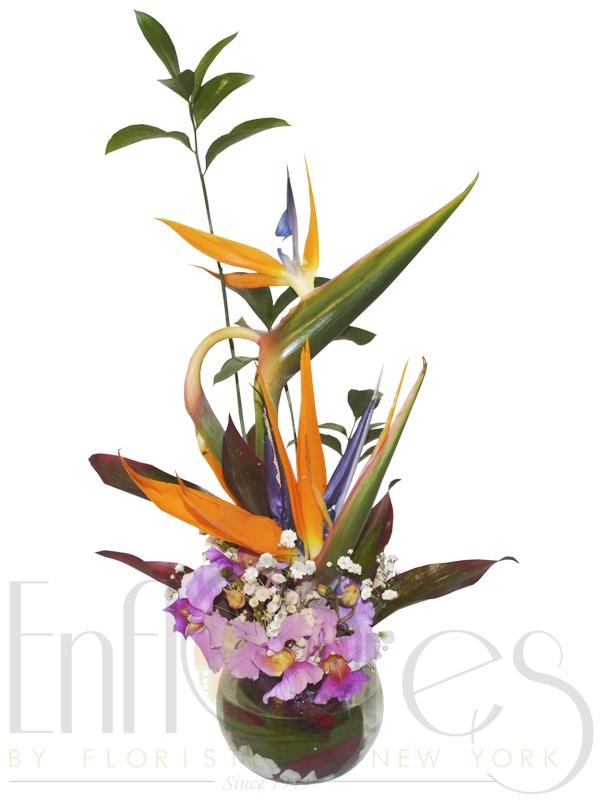 Bombonera en aves y orquideas 30cm *15cm