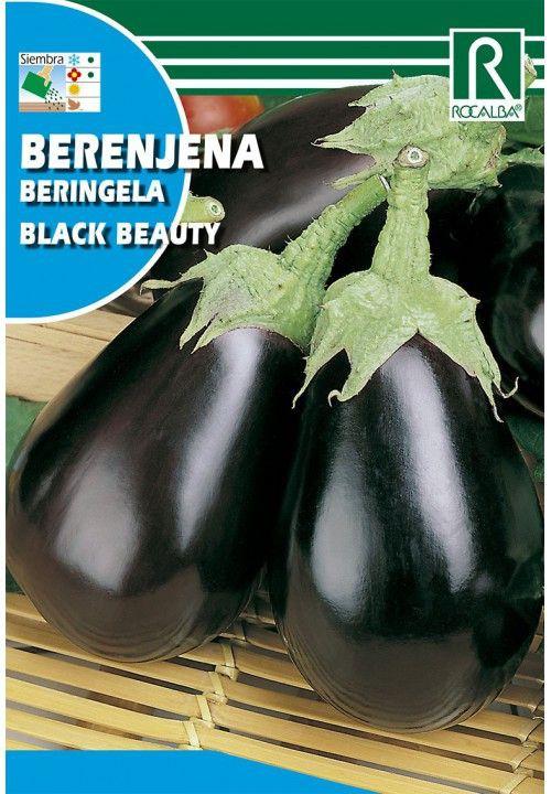 Berenjena black beauty Sobre 3 gr