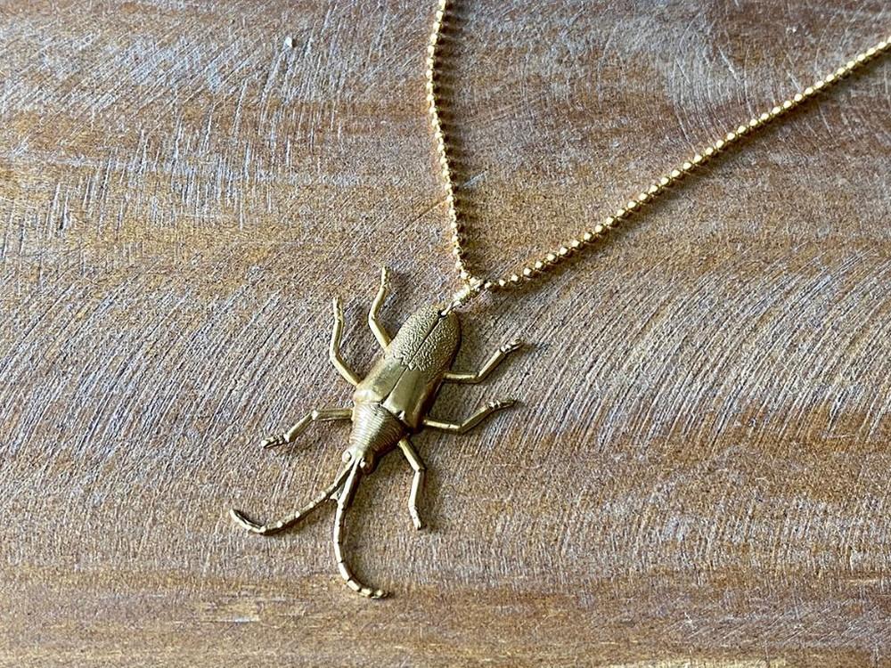 """Collar bicho """"m"""" escarabajo largo"""
