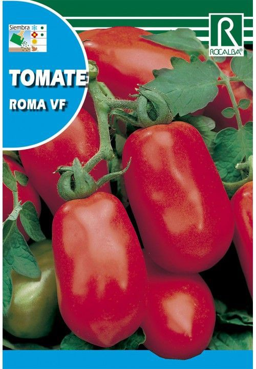 Tomate roma vf 1 gr