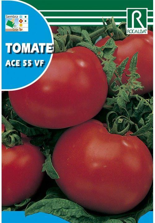Tomate ace 55 1 gr
