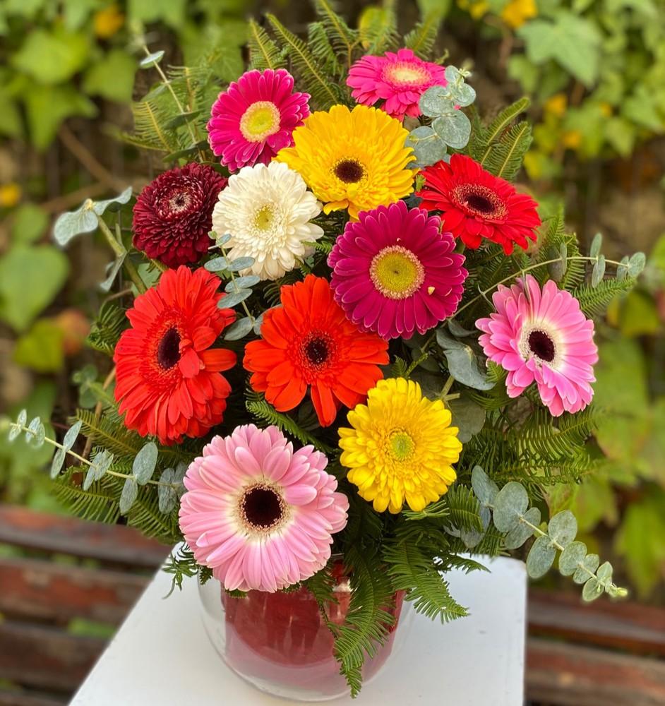 Gerberas surtidas florero con 12 flores de gerberas. el florero va con agua para que la flor no se fatigue.