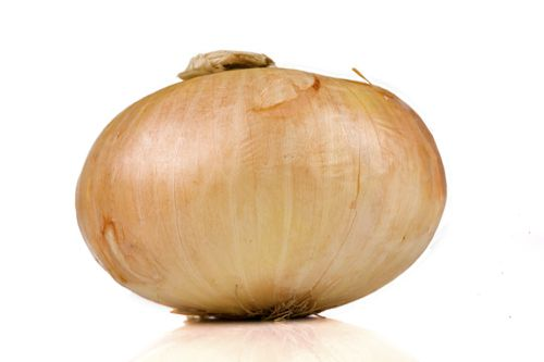 Texas Sweet Yellow Onion